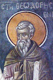 Преподобный Феодор Освященный.